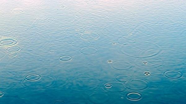 雨の日にはバズベイト!