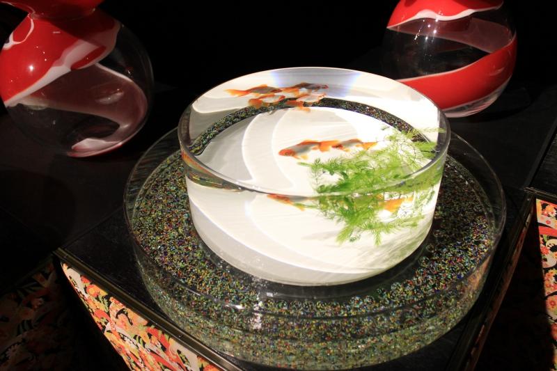 金魚鉢で金魚を鑑賞する