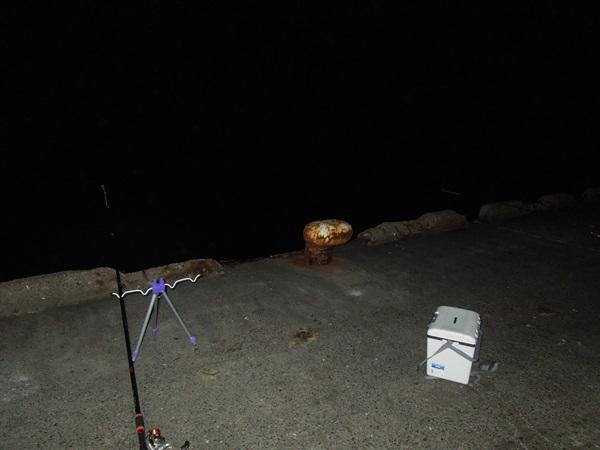 ヘッドランプは夜釣りで必須!