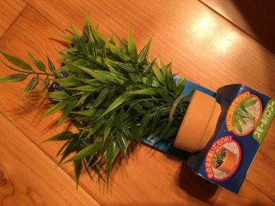 人工水草をレイアウトに使ってみよう