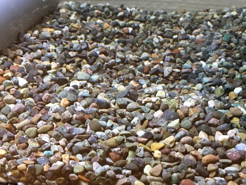 大磯砂はアクアの定番