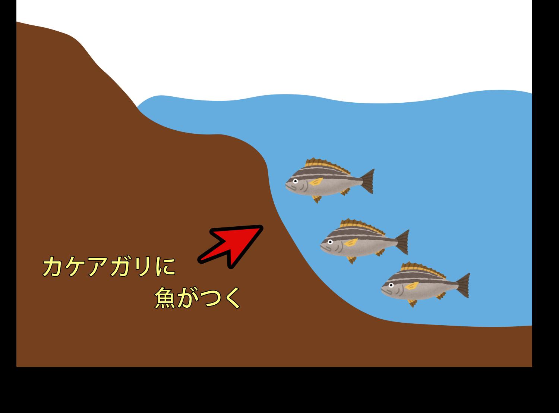 投げ釣りでカケアガリを狙おう
