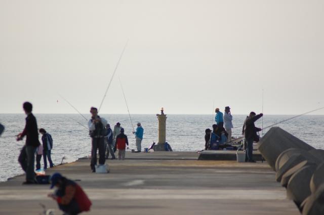 サバ釣りの時期と時間帯