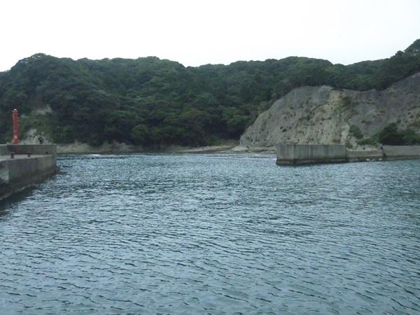 カワハギ釣りのポイント