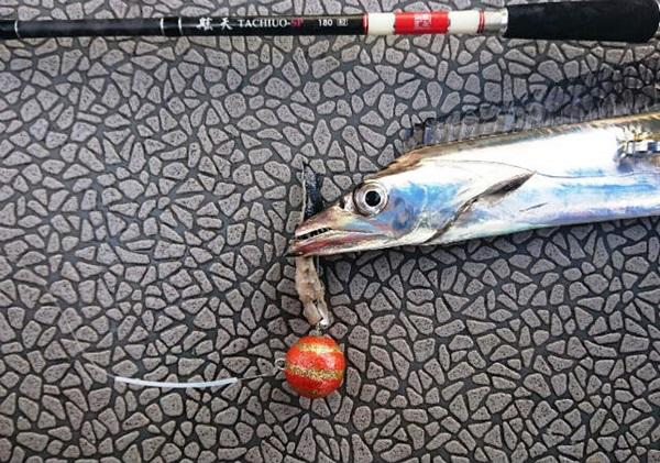 太刀魚テンヤってどんな釣り?
