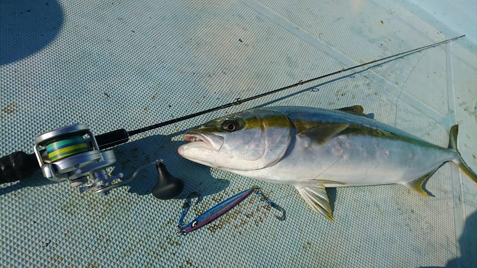 ヒラマサの釣り