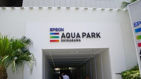 アクアパーク品川のドルフィンパフォーマンスは外せない!