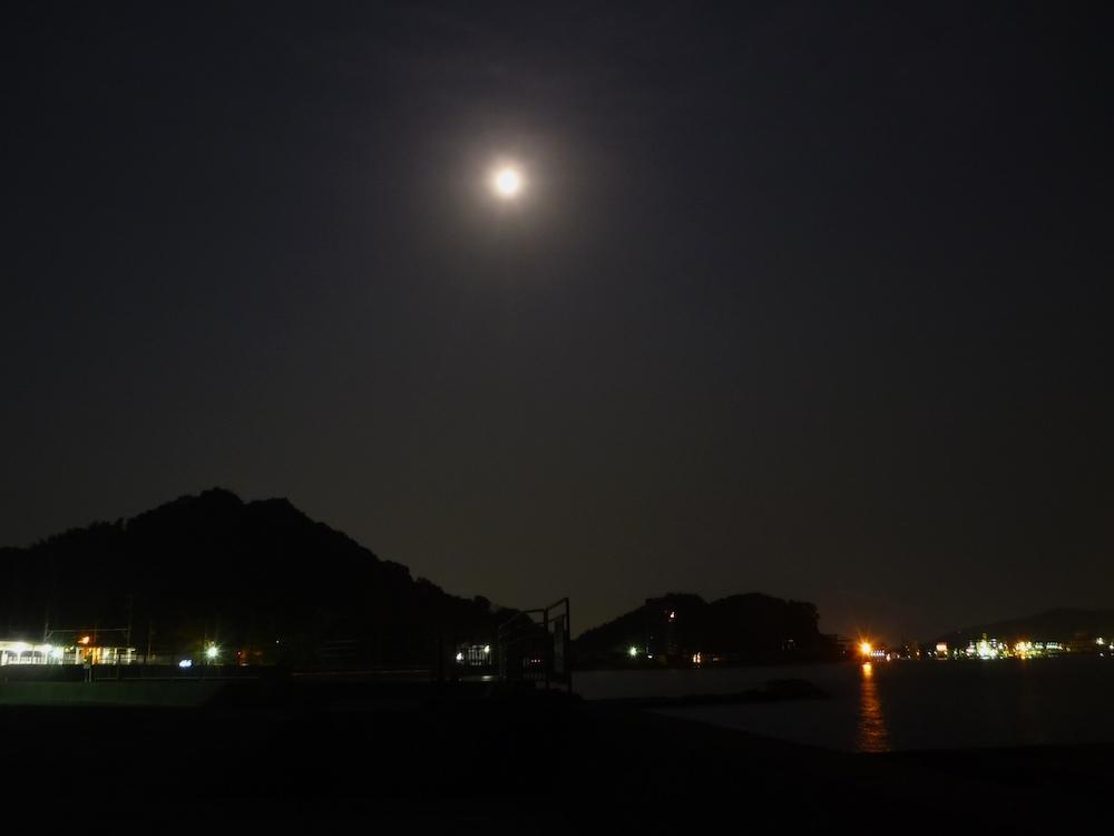 夜のアオリイカ釣り