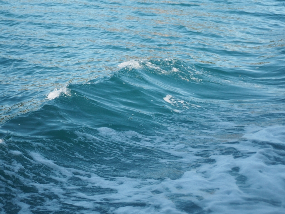 アオリイカ釣りには少し波があると良い