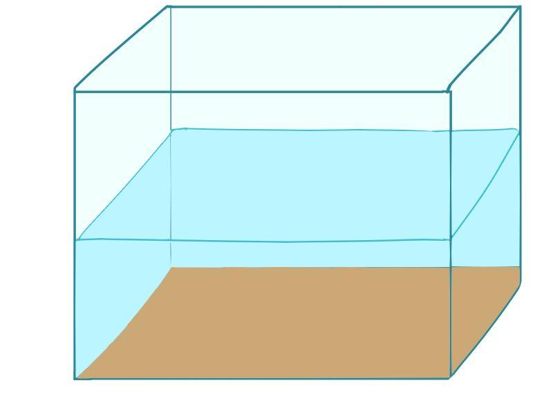 カラシンに適した水槽サイズ