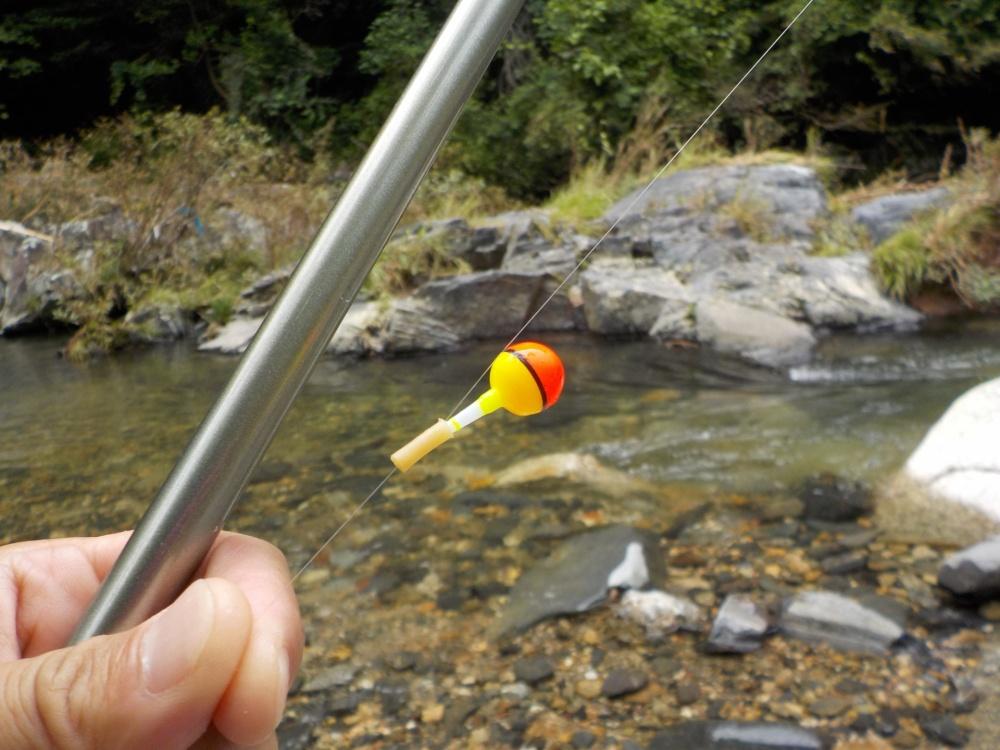 オヤニラミは釣ることもできる!