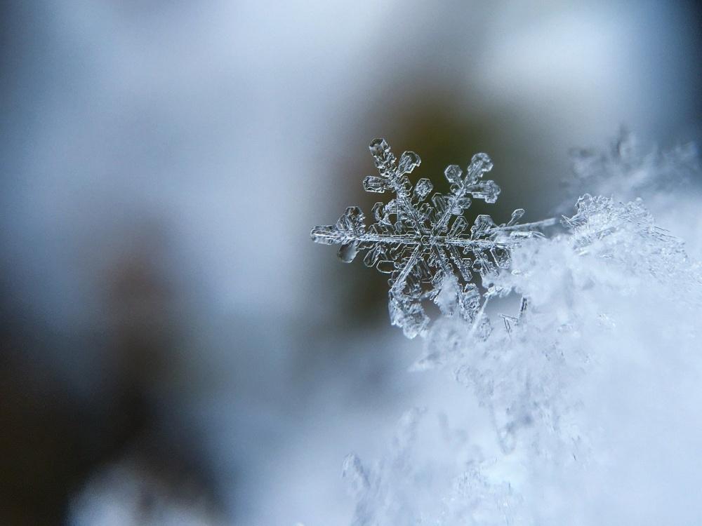 冬のメバリングは大型のチャンス
