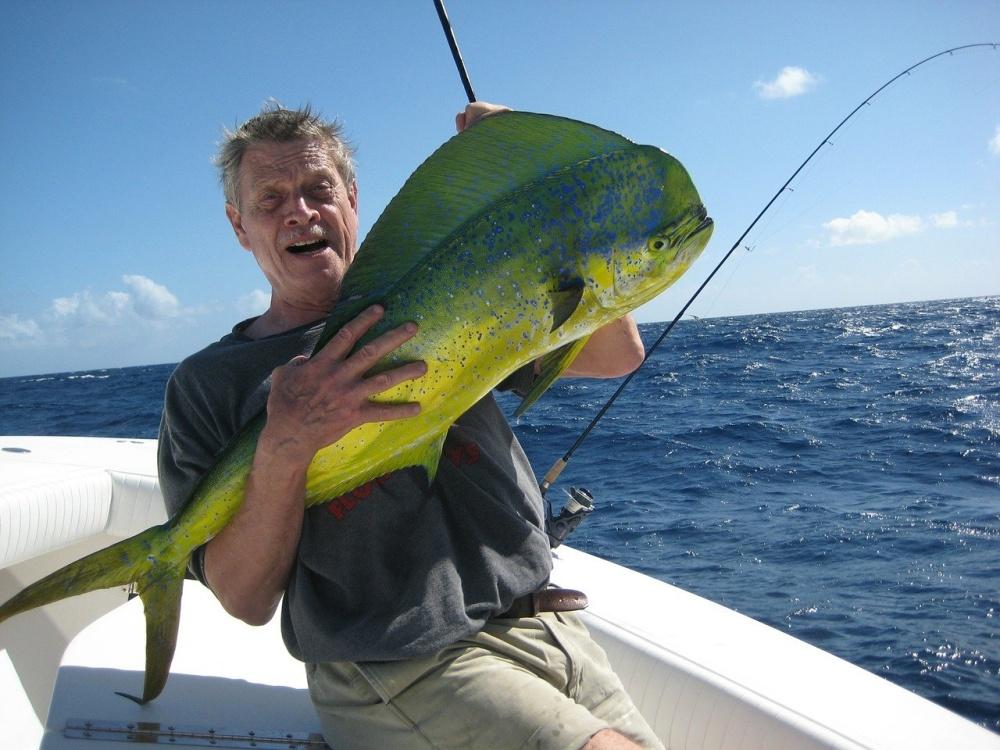 夏はシイラ釣りを楽しもう!