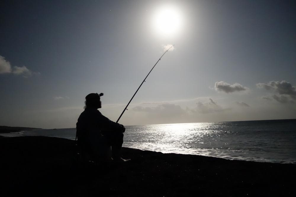 夜釣りのメリット
