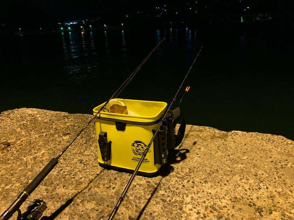 夜釣りは楽しい!