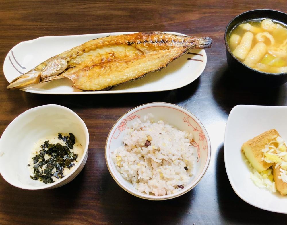 カマスは美味しい大衆魚