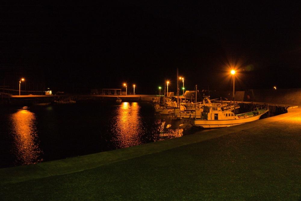 タコ釣りは夜でもできる?
