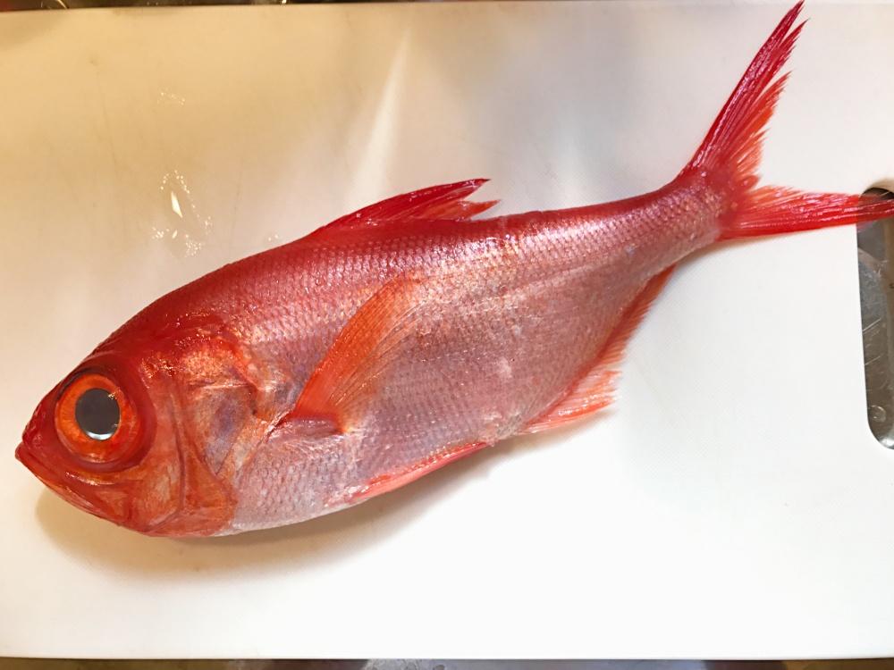 キンメダイってどんな魚?
