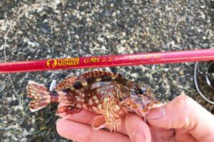 鱒レンジャーNextで数釣りを楽しもう!